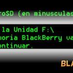 blackberry_microsd1