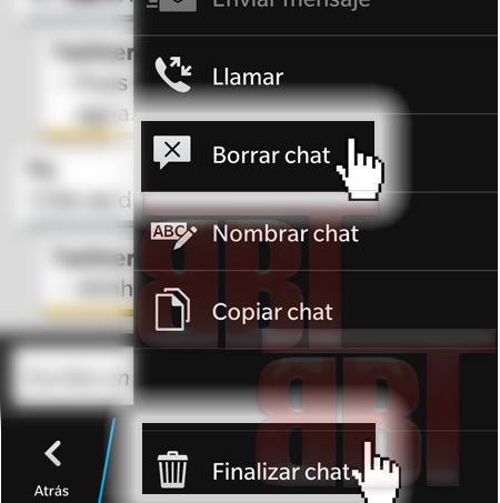borrar_chat_finalizar