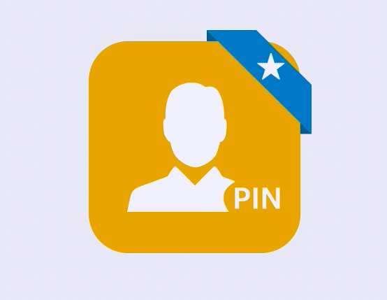 pin_bbm